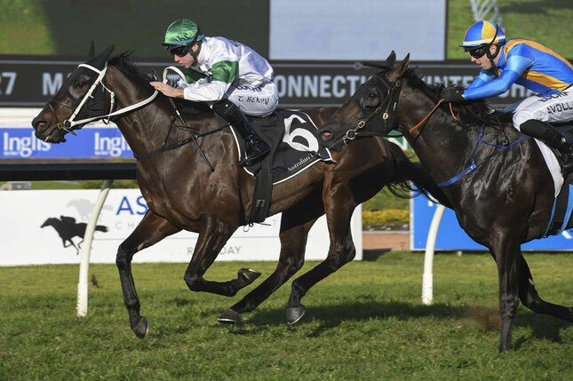 Seaway winning the Listed Winter Challenge (1500m) at Rosehill on Saturday - Bradleyphotos.com.au