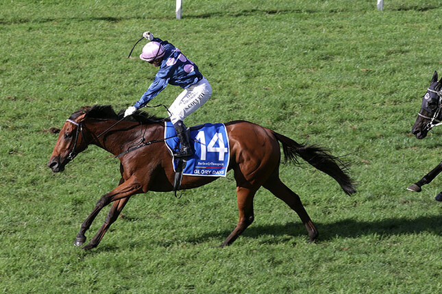 Glory Days winning the Gr.1 Auckland Cup (3200m) - Trish Dunell