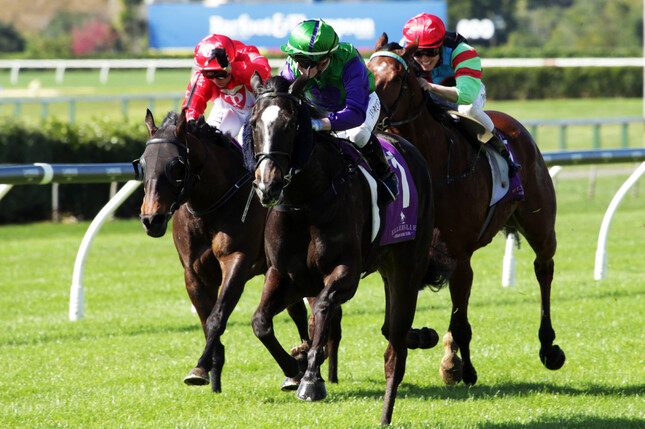 Jasmine Fawcett guides Back In A Flash to a comfortable victory at Ellerslie  - Kirstin Ledington