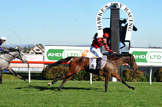 No Change winning at Hastings last month.  - Peter Rubery (Race Images Palmerston North)