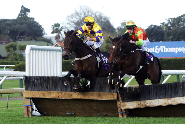 Eventual winner Bad Boy Brown (inner) and Laekeeper take the last fence together as they battle out the finish at Ellerslie  - Trish Dunell